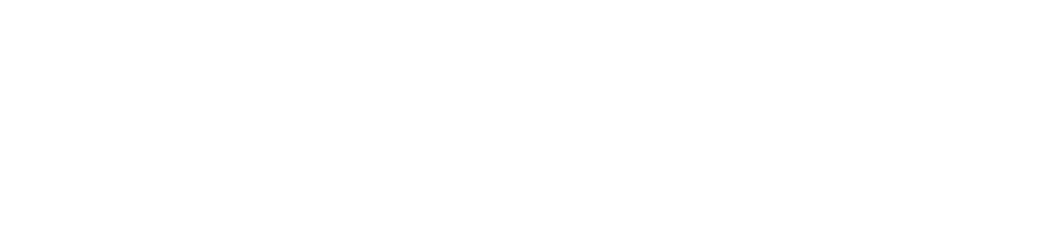 Yellow Buck Inc.